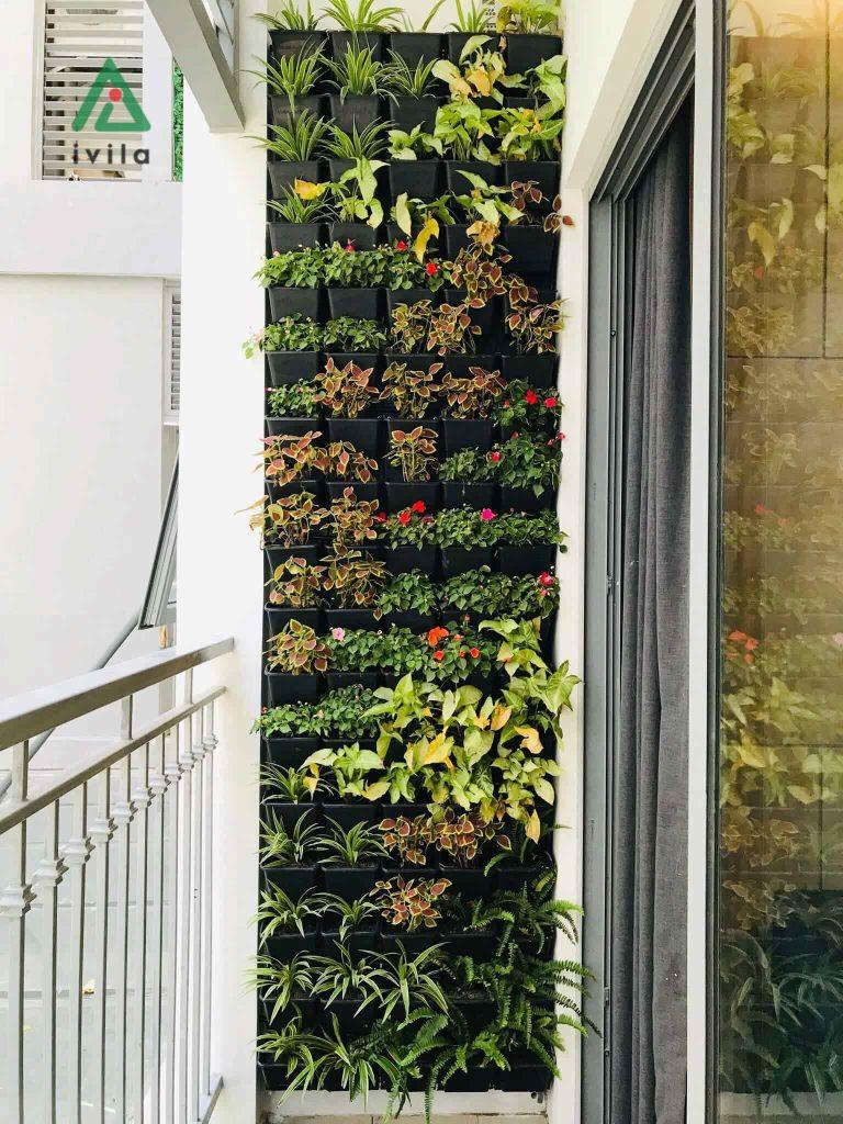 Bộ vườn chậu nhựa treo tường trồng hoa trồng rau tại nhà, trang trí ban công. Tiki.vn